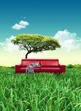Sofá rojo en campo de hierba Imagen de archivo