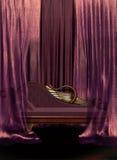 Sofá y cortinas libre illustration