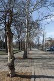 SOFÍA, BULGARIA - 7 DE MARZO DE 2019: Edificio típico en el centro de la ciudad de Sofía, Bulgaria imágenes de archivo libres de regalías