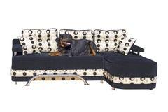 sofa Royaltyfri Bild