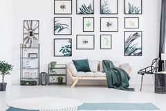 Sofa with cushion. Bright wooden sofa with green cushion and blanket standing under posters in living room with plants royalty free stock photo