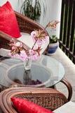 Sofa de rotin Photographie stock libre de droits