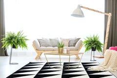 Sofa en appartement avec des fougères photos stock