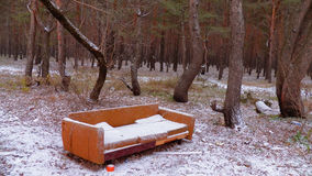 Sofa in the forest. Under the snow. Fun Stock Photos