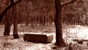 Sofa in the forest. Under the snow. Sepia Royalty Free Stock Photos