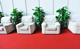 Sofa and green plants Stock Photo