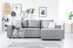 Sofa in living room. Big, corner sofa with pillows, white shelves and plants in a modern living room interior Royalty Free Stock Photo