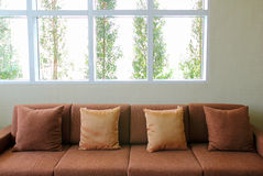 Sofa in the living room with plant outside the windows Royalty Free Stock Photo