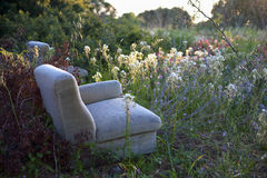 Sofa in the middle of the nature Royalty Free Stock Images