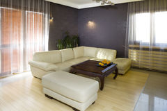 Sofa in modern living room. Luxurious leather sofa or settee in spacious modern living room Royalty Free Stock Photos