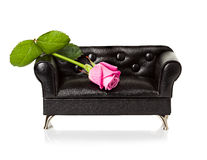 Sofa with red rose Royalty Free Stock Image