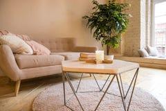 Sofa, table basse et usine dans le Scandinave dénommé par salon divan et usine mise en pot dans un intérieur confortable de salon photo stock