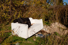 Sofa thrown out Royalty Free Stock Photos