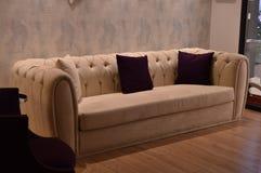 Soffa i vardagsrum med trägolv Royaltyfri Foto