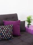Soffa med färgrika kuddar och den gröna växten arkivfoton