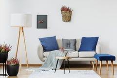 Soffa med kuddar och filten royaltyfri fotografi
