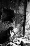 Sofferenza Upset della giovane donna Fotografie Stock Libere da Diritti