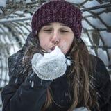 Soffiando nell'inverno Fotografia Stock Libera da Diritti