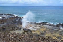 Soffiatura gettante di Horn, Poipu, Kauai, Hawai immagini stock libere da diritti