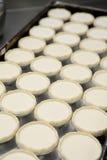 Soffio della crostata dell'uovo sul vassoio Fotografia Stock Libera da Diritti