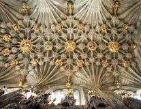 Soffitto della cappella del cardo selvatico Fotografie Stock
