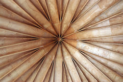 Soffitto di legno Fotografia Stock Libera da Diritti