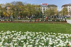 SOFIA, ΒΟΥΛΓΑΡΙΑ - 14 ΑΠΡΙΛΊΟΥ 2018: Λουλούδια στο πάρκο μπροστά από το εθνικό παλάτι του πολιτισμού στη Sofia Στοκ Εικόνα