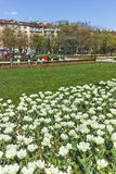 SOFIA, ΒΟΥΛΓΑΡΙΑ - 14 ΑΠΡΙΛΊΟΥ 2018: Λουλούδια στο πάρκο μπροστά από το εθνικό παλάτι του πολιτισμού στη Sofia Στοκ Εικόνες