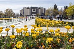 Spring view of flower garden in front of National Palace of Culture, Bulgaria. SOFIA, BULGARIA -APRIL 21, 2019: Spring view of flower garden in front of National royalty free stock photo