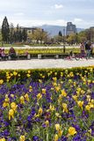 Spring view of flower garden in front of National Palace of Culture, Bulgaria. SOFIA, BULGARIA -APRIL 21, 2019: Spring view of flower garden in front of National stock images