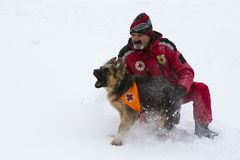 Red Cross rescuer with dog Royalty Free Stock Photography