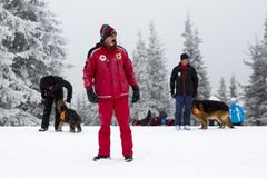 Red Cross rescuers with dogs. Sofia, Bulgaria - January 18, 2017: Rescuers from Mountain rescue service at Red Cross organization participate in a training with Royalty Free Stock Photography