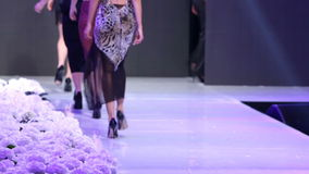 Sofia Fashion Week models from their backs stock video footage