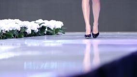 Sofia Fashion Week nur Fahrwerkbeine stock video footage