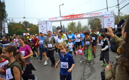 Sofia marathon mass start. On October 12, 2014 in Sofia was held 31 International Marathon. The race started a total of 2,200 people, but at shorter distances Stock Photo