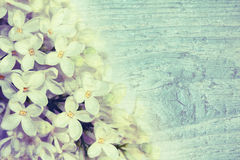 Soft background with lilacs. Beautiful delicate lilac on a wooden texture. Vintage style royalty free illustration