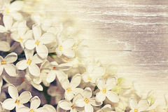 Soft background with white lilacs. Beautiful delicate lilac on a wooden texture. Vintage style royalty free illustration