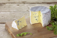 Soft blue cheese from France  on a rustic wooden table Stock Photography