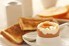 Soft boiled egg Stock Photography