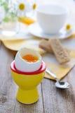 Soft boiled egg for breakfast Stock Photography