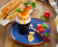 Soft boiled egg for Breakfast  served with bread sticks Royalty Free Stock Photo