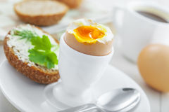 Soft boiled egg breakfast. Traditional breakfast with perfect soft boiled egg, sandwich with butter and dill, coffee cup on a table. International cuisine food Royalty Free Stock Images