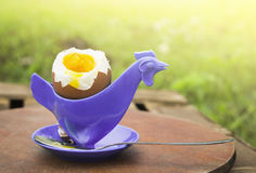 Soft boiled egg  in eggcup in form of chicken Royalty Free Stock Photos