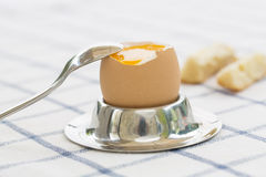Soft boiled egg in eggcup with toast on table Stock Photography