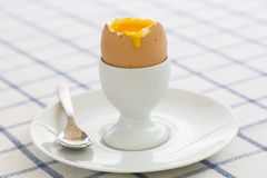 Soft boiled egg in eggcup with toast on table Royalty Free Stock Photo