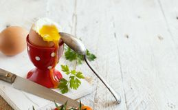 Soft-boiled egg in the eggcup. On a white wooden table Stock Photos