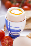 Soft-boiled egg in the morning with toast. In the background of Stock Photo