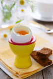 Soft boiled egg and rye bread Stock Image