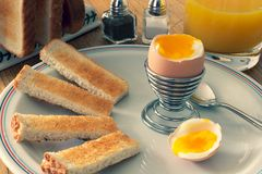 Soft boiled egg with soldiers stock image