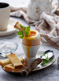 Soft-boiled egg and toasts Royalty Free Stock Photography